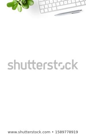 kantoor · werkplek · laptop · bril · houten · tafel · vrouw - stockfoto © karandaev