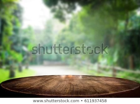 Gekozen focus lege bruin houten tafel groene Stockfoto © Freedomz