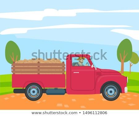 farmer driving truck with potato in trunk farming stock photo © robuart