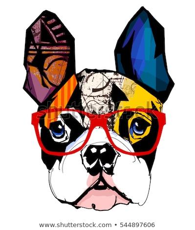 Acuarela retrato bulldog cute perro camiseta Foto stock © Natalia_1947