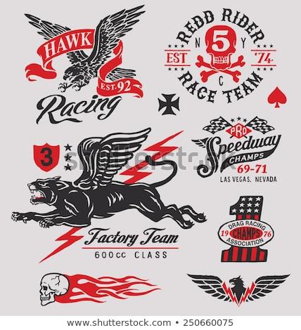 corrida · emblema · velocímetro · bandeiras · carro - foto stock © carbouval