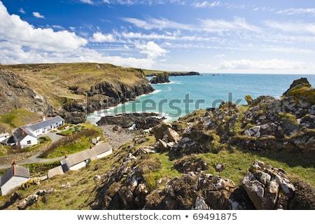Coastline at Kynanace Cove, Cornwall, England Stock photo © fisfra