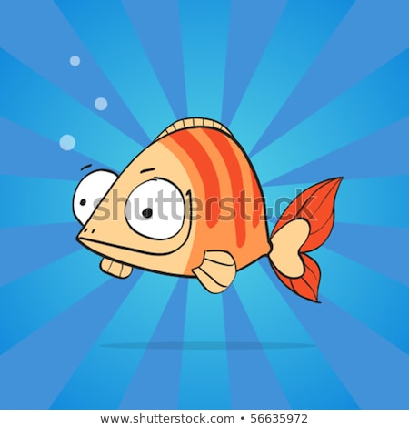 Big-eyed clownfish Stock photo © zsooofija