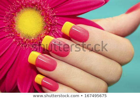 Rood · rose · vrouwelijke · hand · geschilderd · gekleurd · nagels - stockfoto © ruslanomega