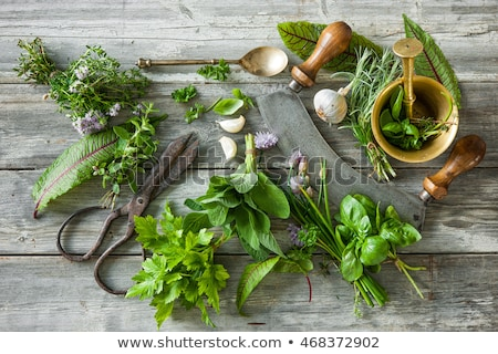 herbes · fraîches · haché · planche · à · découper · santé · vert - photo stock © toaster