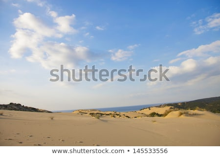 Piscinas dune - Sardinia, Italy Stock photo © Antonio-S