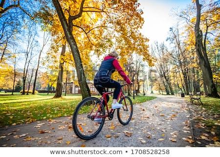 старший · женщину · верховая · езда · низкий - Сток-фото © aspenrock