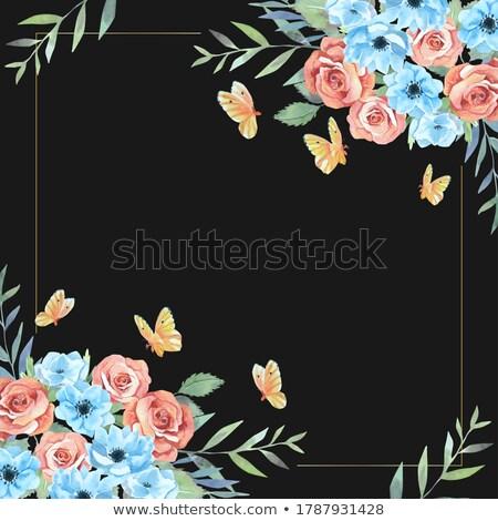 Pillangó felső sarok dísz sötét pillangók Stock fotó © HouseBrasil
