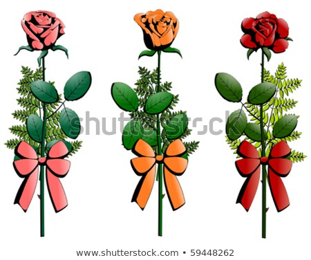 Сток-фото: три · небольшой · роз · украшенный · изолированный
