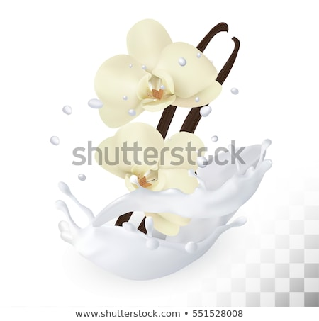 yogurt with vanilla stick Stock photo © M-studio