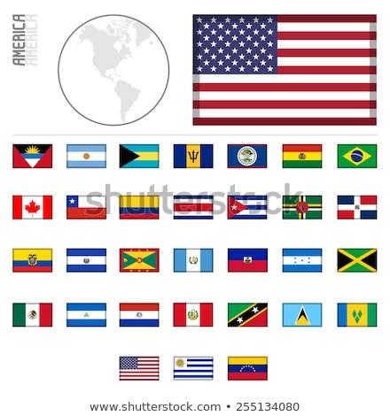 EUA Barbados miniatura bandeiras isolado branco Foto stock © tashatuvango