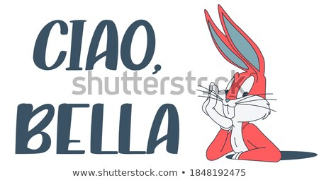 Bella Bunny Stock photo © naripuru