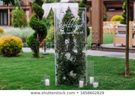 Bruiloft glas twee witte liefde drinken Stockfoto © konturvid