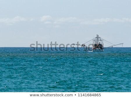 モーターボート セーリング 地平線 美しい 画像 小 ストックフォト © epstock