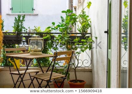 belső · udvar · villa · mediterrán · francia · fonott · bútor - stock fotó © artjazz