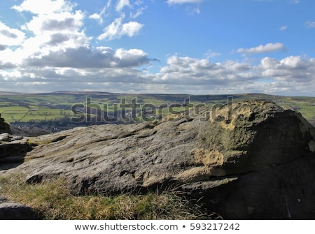 Ocidente yorkshire flor paisagem campo verde Foto stock © chris2766