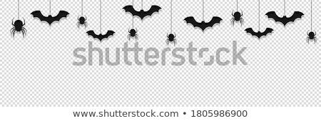 bat hanging Stock photo © adrenalina