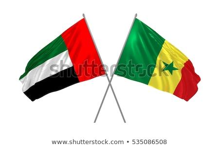 Объединенные Арабские Эмираты Сенегал флагами головоломки изолированный белый Сток-фото © Istanbul2009