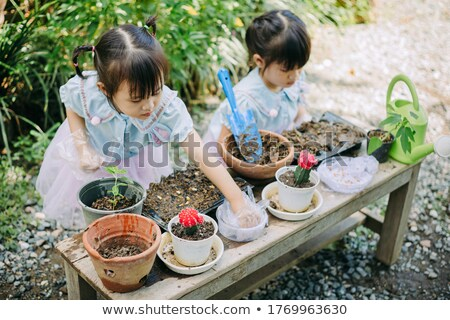 Kids engaging in outdoor activities Stock photo © bluering