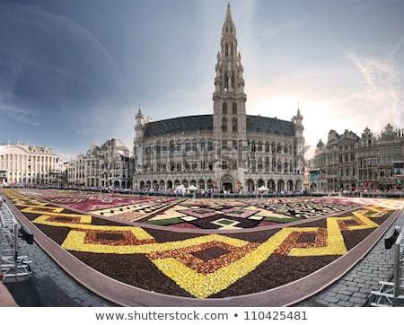 Torre roi lugar Bruselas casa edificio Foto stock © artjazz