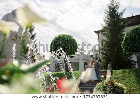 Sposa lo sposo posa fontana vecchio donna Foto d'archivio © tekso