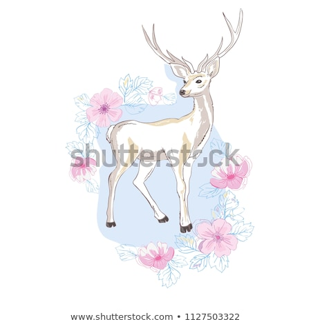 Decorations with White Enchanting Deer Stock photo © dariazu