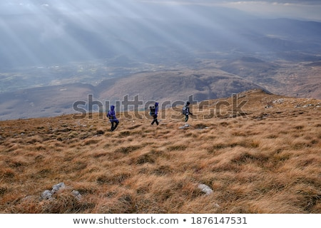 Three girls walking over a grass hill Stock photo © IS2