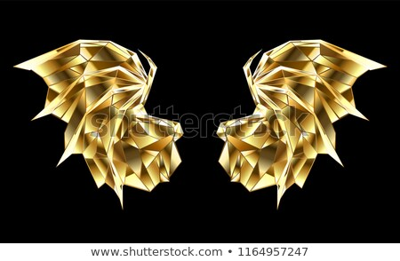 Gold polygonal dragon wings Stock photo © blackmoon979