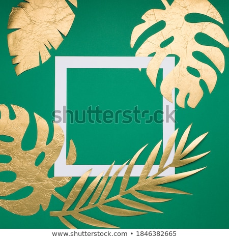 Tropical leaves frame Stock photo © PurpleBird