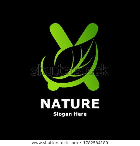 Stock photo: green leaf letter x logo element icon