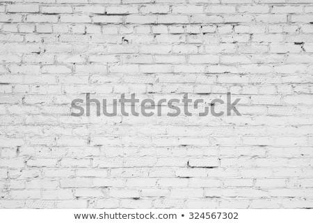 Muur reparatie oude Rood architectuur Stockfoto © romvo