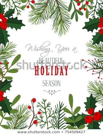 Karácsony keret fenyőfa ágak fagyöngy boldog Stock fotó © odina222