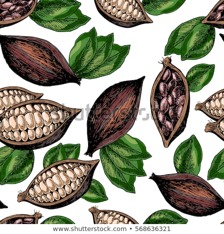 seamless pattern hand sketched nuts Stock photo © frescomovie