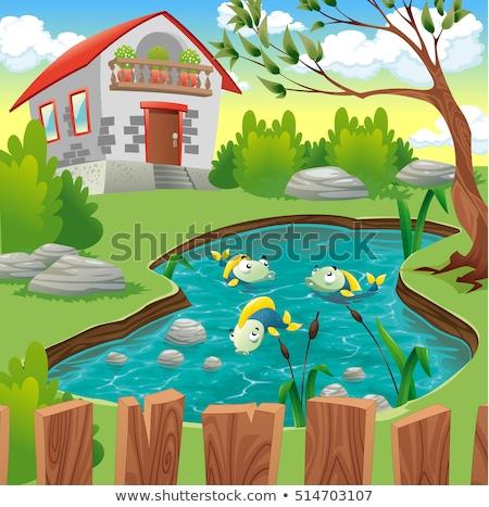 Erdő jelenet hal tavacska illusztráció égbolt Stock fotó © colematt