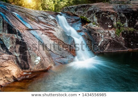 Lush slip slide waterfall into swimming hole Stock photo © lovleah