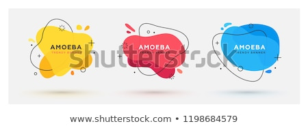 Fluid design of liquid color abstract geometric shapes. Fluid gradient elements for minimal banner,  Stock photo © kyryloff