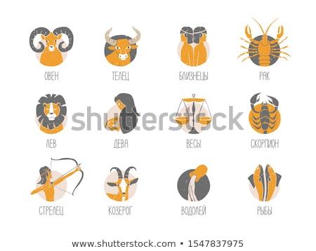 állatöv · horoszkóp · felirat · kör · tenger · kecske - stock fotó © cidepix