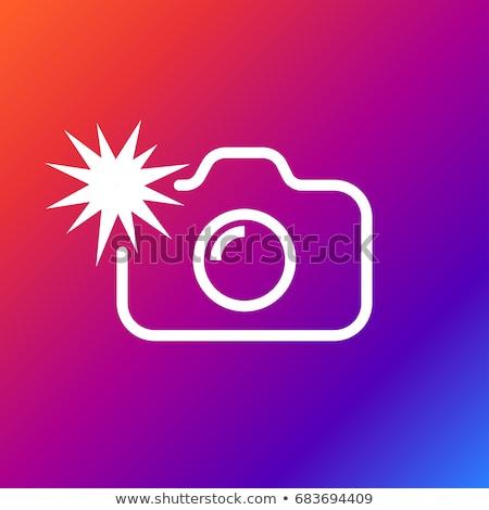 Flash świetle kamery wektora kobieta Zdjęcia stock © robuart