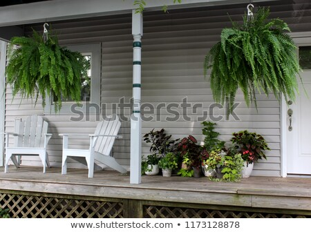 Two adirondack chairs porch Stock photo © bobkeenan