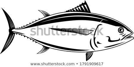 Tonijn zijaanzicht retro zwart wit retro-stijl illustratie Stockfoto © patrimonio