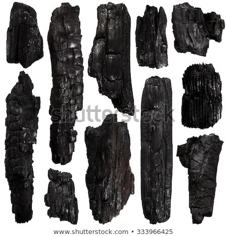 Close up of burnt tree trunk Stock photo © backyardproductions