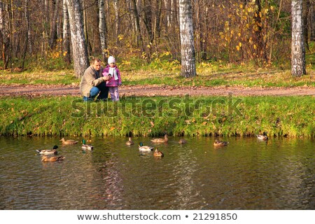 Grandfather with granddaughter in wood in autumn look on ducks in water