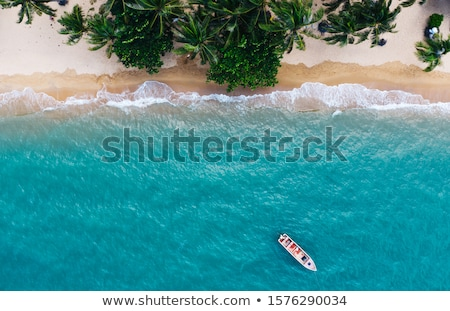 vis · boot · paradijs · strand · Jamaica · water - stockfoto © smithore