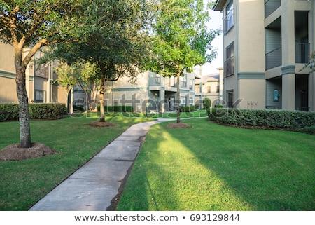 Nowoczesne ławce zielone trawiasty trawnik krajobraz Zdjęcia stock © vlaru