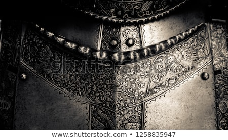 Armour Stock photo © sibrikov