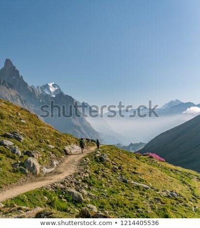 долины итальянский Альпы лет мнение Италия Сток-фото © Antonio-S