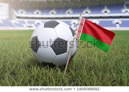 サッカー サッカー ボール ベラルーシ フラグ 3D ストックフォト © daboost