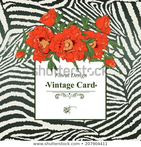 tavasz · üdvözlőlap · zebra · absztrakt · természet · születésnap - stock fotó © balasoiu