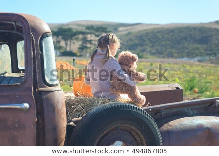 Stock photo: Little rusty teddy bear