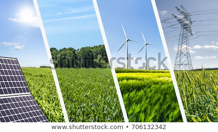 Collage durable énergie herbe soleil nature Photo stock © photography33